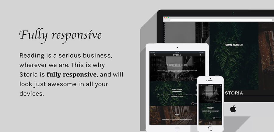 Storia - A WordPress Theme for Writers, Bloggers, Storytellers - 1